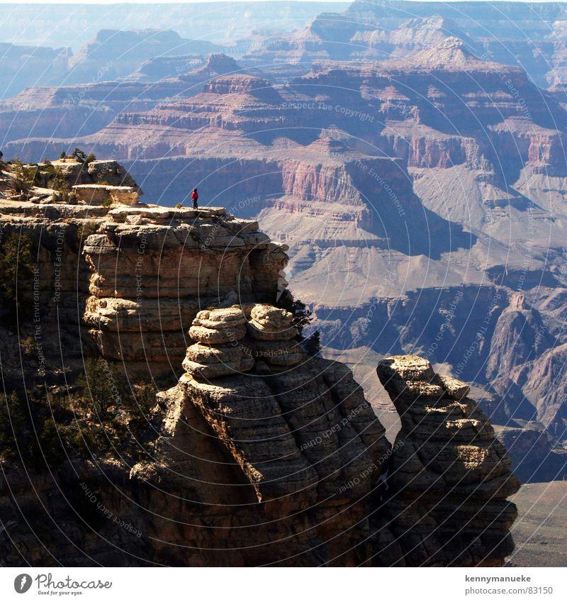 On the Rock Arizona USA Nationalpark 2006 Schlucht Berge u. Gebirge bird shooting Grand Canyon State rocks United States of America