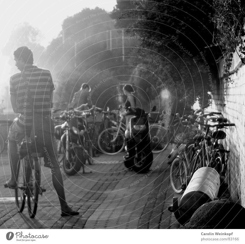 Hamburger Sommerneige. Mensch Sommer Strand Fahrrad Nebel Hamburg Sträucher Fahrradfahren Rauch Verkehrswege Abenddämmerung Elbe Bunker Sommerabend Sommertag Elbstrand