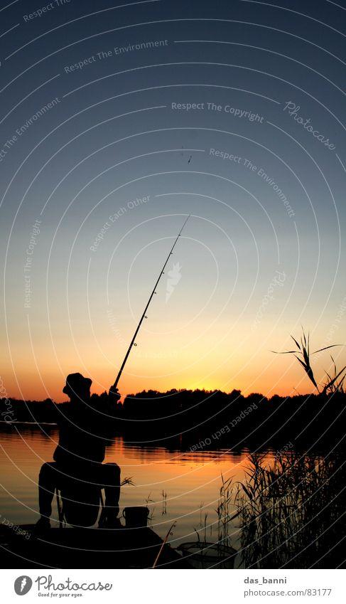 der alte mann und der see Himmel Natur Wasser blau rot Sonne Ferien & Urlaub & Reisen Sommer Wolken ruhig Einsamkeit schwarz Erholung Farbe Wärme See