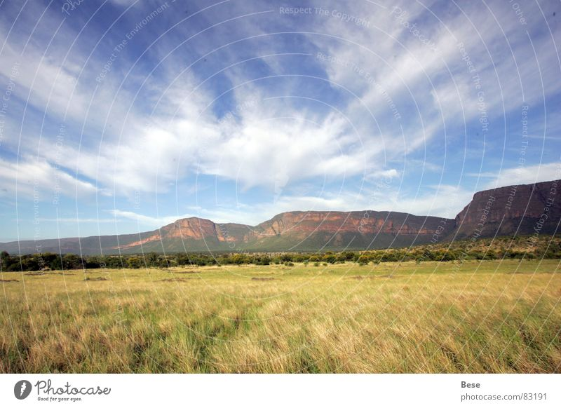Entabeni Wolken Berge u. Gebirge Afrika Nationalpark Südafrika Hochplateau