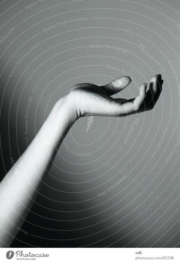 Geste I nehmen Hand Unterarm Finger Daumen gestikulieren Körperhaltung berühren drehen Licht dunkel Schwarzweißfoto Handteller Arme Haut Bewegung festhalten