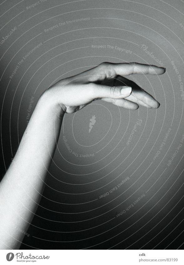 Geste II Mensch Hand dunkel Gefühle Arme Haut Finger Aktion berühren fangen machen zeigen Daumen Fingernagel Nagel nehmen