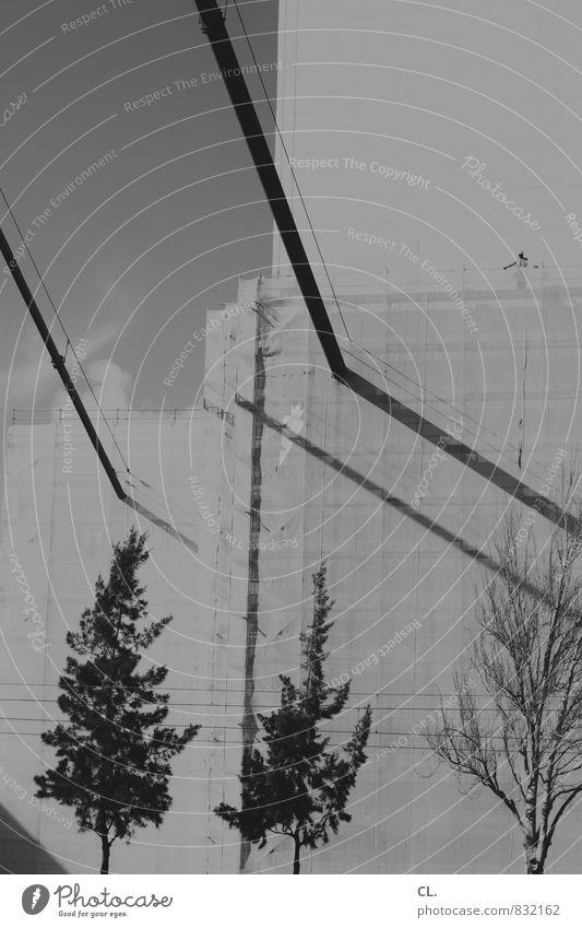 brückenbau Mensch Natur Stadt Baum Umwelt Architektur groß hoch Brücke Wandel & Veränderung Baustelle Bauwerk bauen Brückenkonstruktion Brückenbau