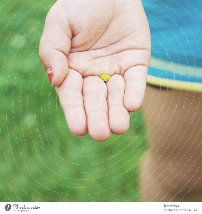 überraschung Spielen Kind Junge Kindheit Hand Finger 1 Mensch Umwelt Natur Sommer Schönes Wetter Blume Gras Blüte Grünpflanze Garten Park T-Shirt Blühend Freude