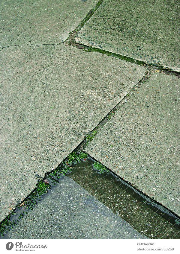 Fugen Nieselregen Bach Beton Platz Parkplatz nass Kreuzberg feucht Kies Stellenabbau Platzangst Detailaufnahme Stein Mineralien gewerbehof Regen moneten Kröte