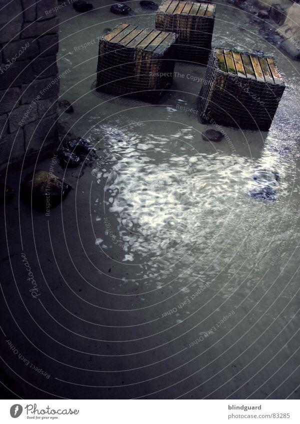 """""""Fünfzehn Mann auf des toten Manns Kiste, Wasser Strand dunkel Spielen Holz Sand Stein Mauer Küste nass Fluss obskur Ereignisse Bach Pirat"""