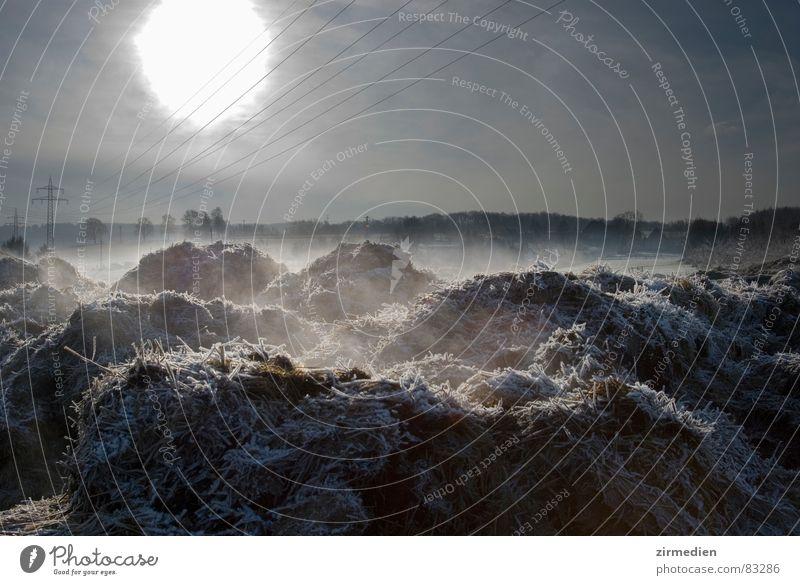 Dampfender Misthaufen Gegenlicht mystisch Monochrom Winter Sonne Frost Eis Kabel Wasserdampf frostgefühl kältegefühl Nebel Schnee