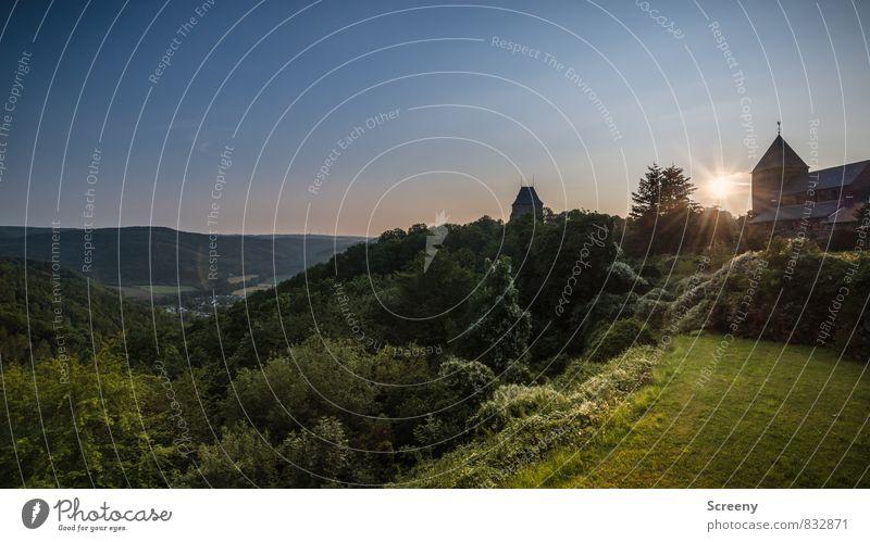 Burg Nideggen Himmel Natur Ferien & Urlaub & Reisen Pflanze Sommer Sonne Baum ruhig Landschaft Tier Wald Berge u. Gebirge Wiese Gras Deutschland Sträucher
