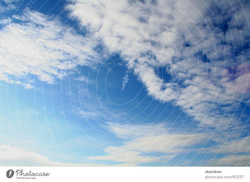 himmel, der ... Natur Himmel blau Wolken Ferne oben Freiheit Stimmung Hintergrundbild Wind Wetter Luftverkehr Frieden Unendlichkeit tief ziehen