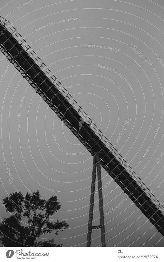 im industriegebiet Baustelle Industrie Himmel Baum dunkel trist Industriefotografie industriell Industrielandschaft Industriebau Industriekultur