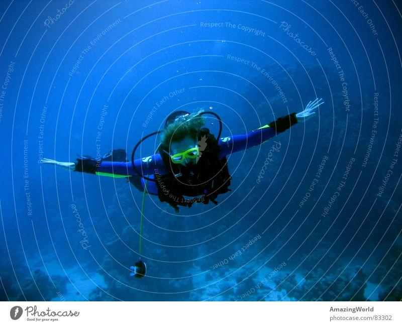 Deep Flight Wasser Meer blau Freude Freiheit Luft fliegen tauchen Unendlichkeit tief atmen Luftblase Am Rand Schweben Wissenschaftler Wassersport