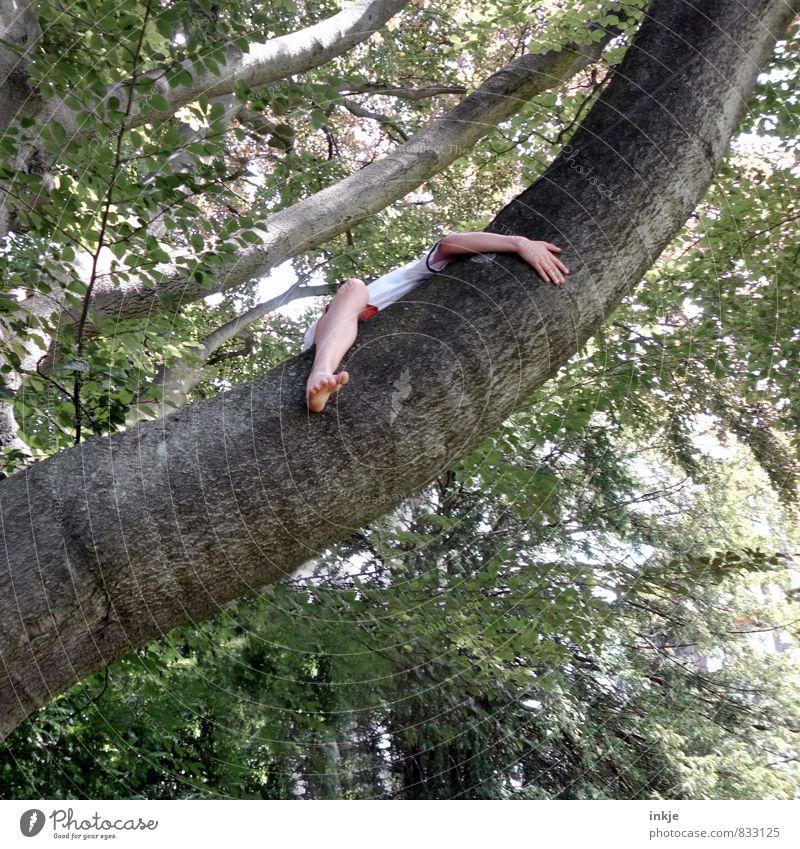 Q wie .... Querkopf Mensch Kind Natur Jugendliche Sommer Baum Leben Gefühle Junge Spielen Beine Freizeit & Hobby Kindheit sitzen Arme 13-18 Jahre