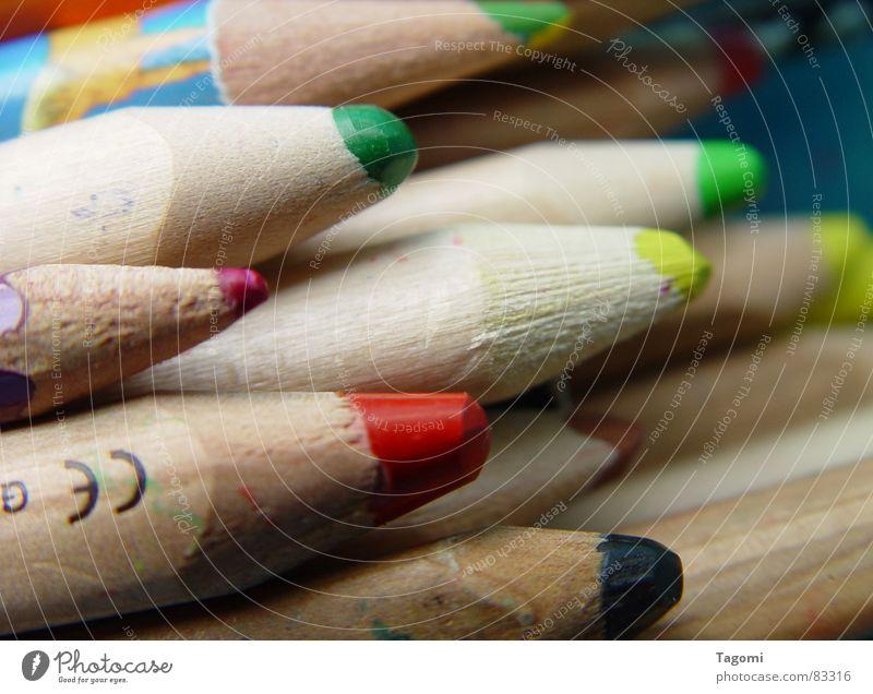Bunte Vielfalt Federtasche Farbstift Schulranzen Volkshochschule mehrfarbig Schreibstift Holz Farbmittel Regenbogen rot rosa violett grün braun schwarz