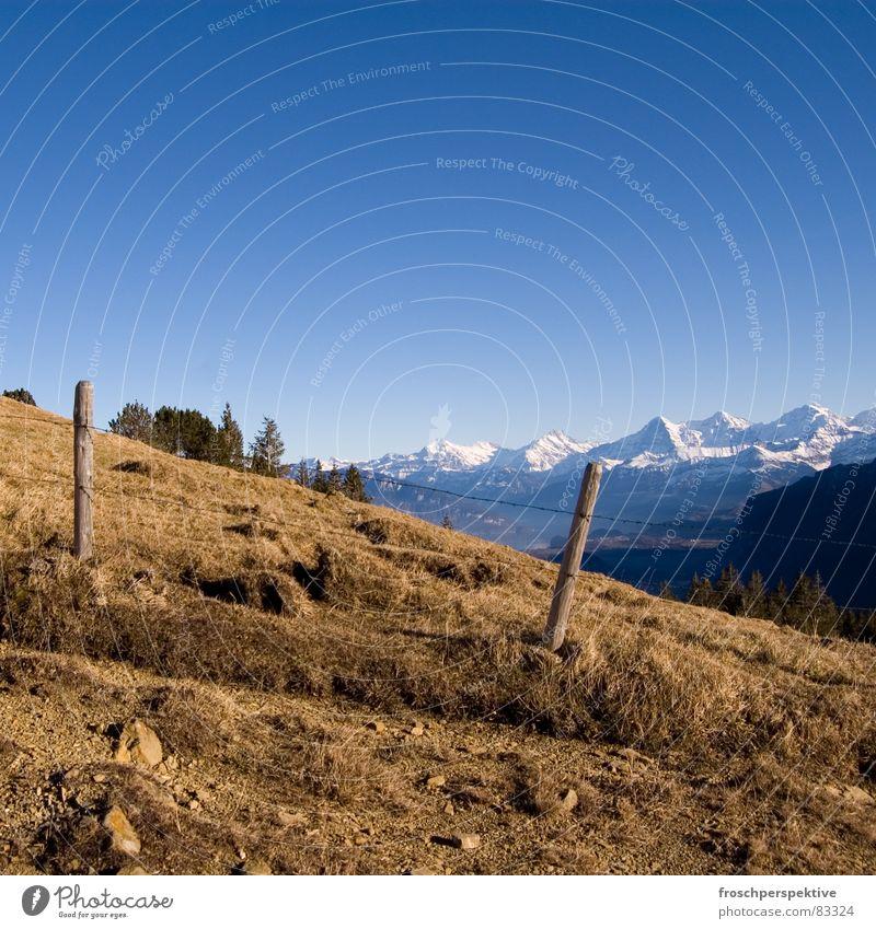 switzerland is a typical pulmex land III Ferien & Urlaub & Reisen Wiese Schnee Berge u. Gebirge Freizeit & Hobby groß Perspektive Europa gut Schweiz Landwirtschaft Aussicht Zaun Grenze Weide vertrocknet