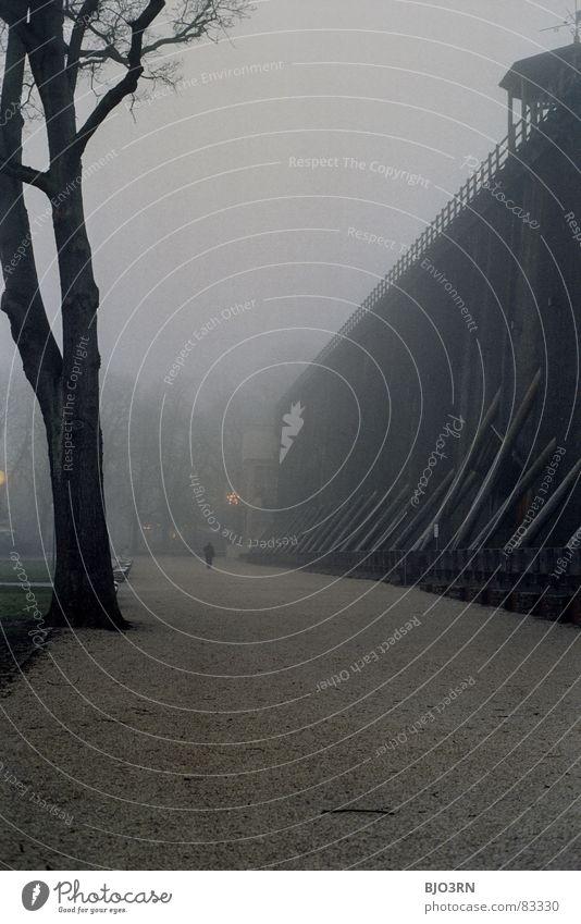 das Wetter im Dezember war... Baum Einsamkeit dunkel Wand Holz Stein Traurigkeit Luft Deutschland Nebel hoch leer Technik & Technologie Tor Denkmal feucht