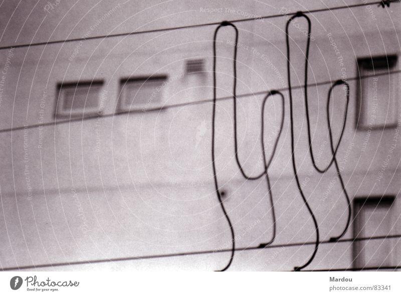 Wire Code Überleitung Leitung Draht Muster abstrakt Fenster Oberleitung Detailaufnahme Schwarzweißfoto Elektrisches Gerät Technik & Technologie Kabel
