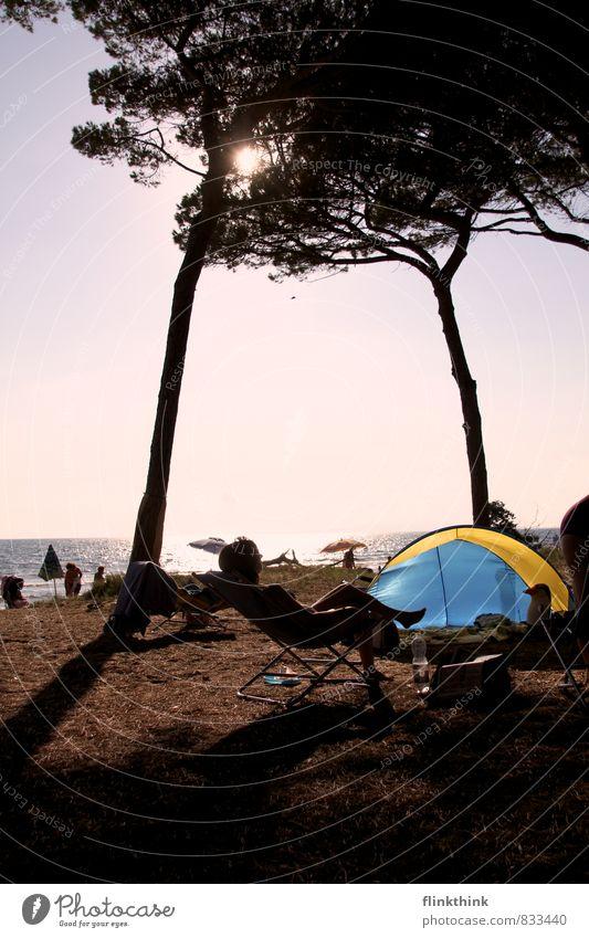 Chill! Mensch Ferien & Urlaub & Reisen Jugendliche Sonne Baum Junge Frau Strand 18-30 Jahre Ferne Erwachsene feminin liegen Tourismus Ausflug Bodenbelag