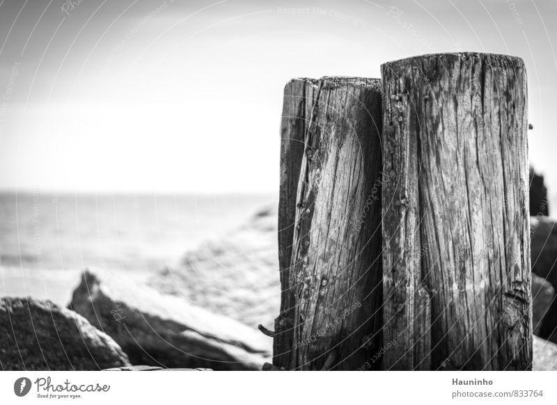 Holzpfähle am Meer Himmel Natur Ferien & Urlaub & Reisen weiß Wasser Sommer Einsamkeit Landschaft Ferne schwarz Umwelt Freiheit Stein Felsen