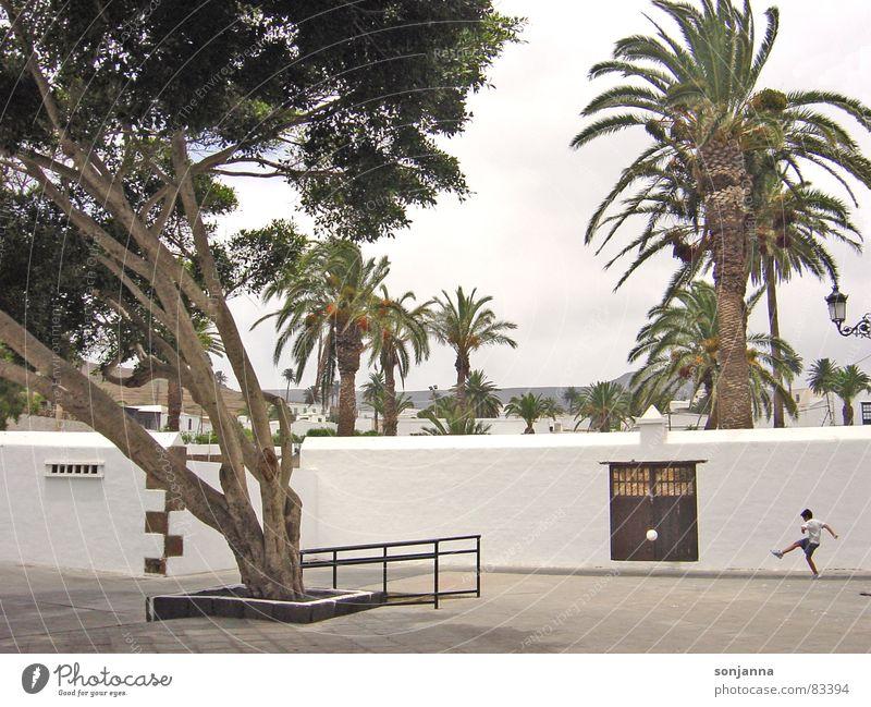 Fussball auf Lanzarote - Tooor Erfolg Fußball Ball Fußballplatz maskulin Junge 1 Mensch Tor Mauer Wand weiß Glück Kindheit Farbfoto mehrfarbig Außenaufnahme Tag