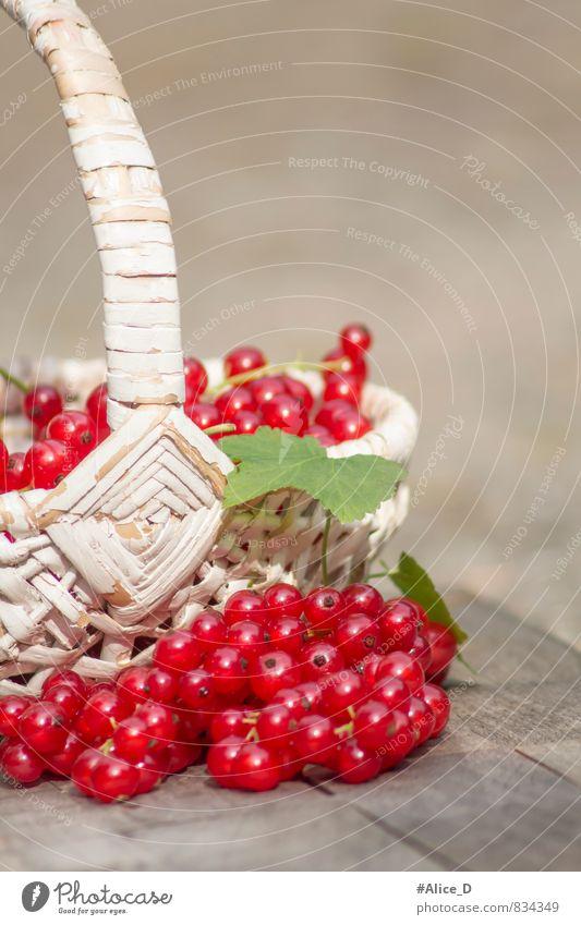Rote Johannisbeeren Gesunde Ernährung Natur Gesundheit Obstkorb Frucht Beeren Rohkost Beerenfruchtstand Rote Früchte Obsternte Bioprodukte lecker sauer
