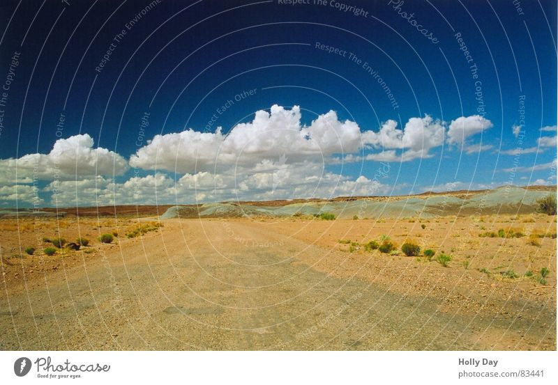 Auf der Piste Ferne Sommer Sand Himmel Wolken Schönes Wetter Sträucher Wüste Verkehrswege Straße Wege & Pfade Linie Unendlichkeit blau silber Einsamkeit Ende