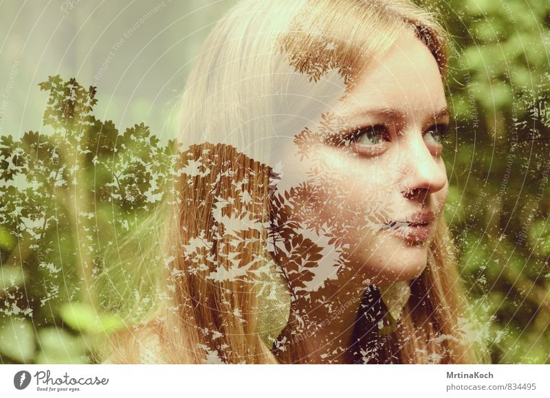 den kopf in den bäumen. Mensch Frau Natur Jugendliche Pflanze Baum Einsamkeit Junge Frau Landschaft 18-30 Jahre Umwelt Erwachsene Traurigkeit feminin Zufriedenheit Fröhlichkeit