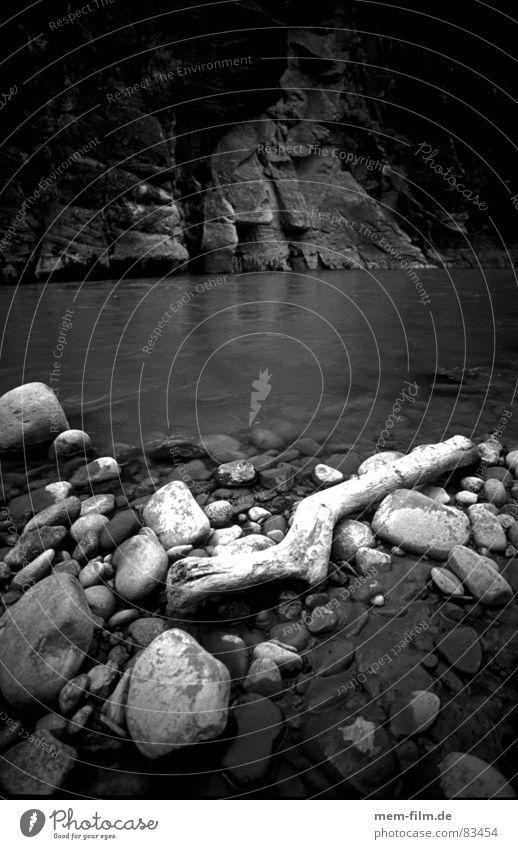 flussbett Flußbett Treibholz Strandgut Holz Schlucht Elektrizität Fluss Bach wildniss Schwarzweißfoto Stein Wasser