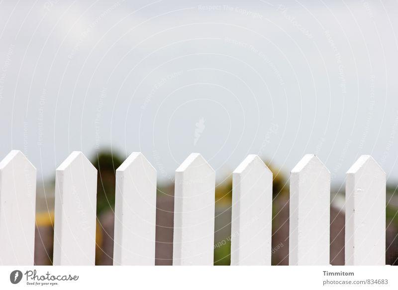 Hell. Umwelt Himmel Wolken Dänemark Menschenleer Zaun Holz ästhetisch schön natürlich Sauberkeit weiß Gefühle Farbfoto Außenaufnahme Textfreiraum oben Tag