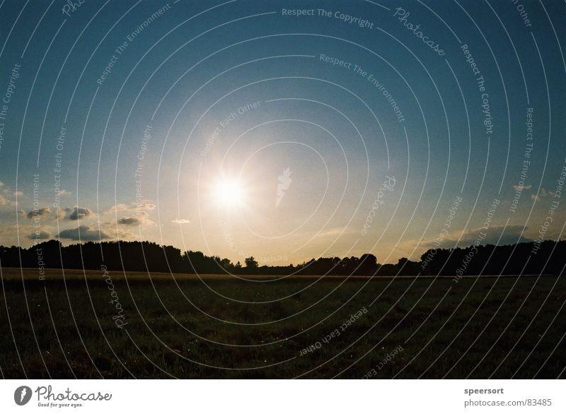 Sunset//Sonnenuntergang Natur Himmel Sommer Wiese Gras Feld Romantik Weide Abenddämmerung Naturphänomene Dorfwiese Gemeindeland