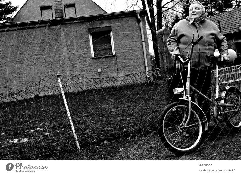 sturmschaden Frau Senior sprechen Dorf Großmutter Bauernhof Zaun Landwirt Osten Nachbar ländlich Fahrrad Nest Weiblicher Senior rustikal