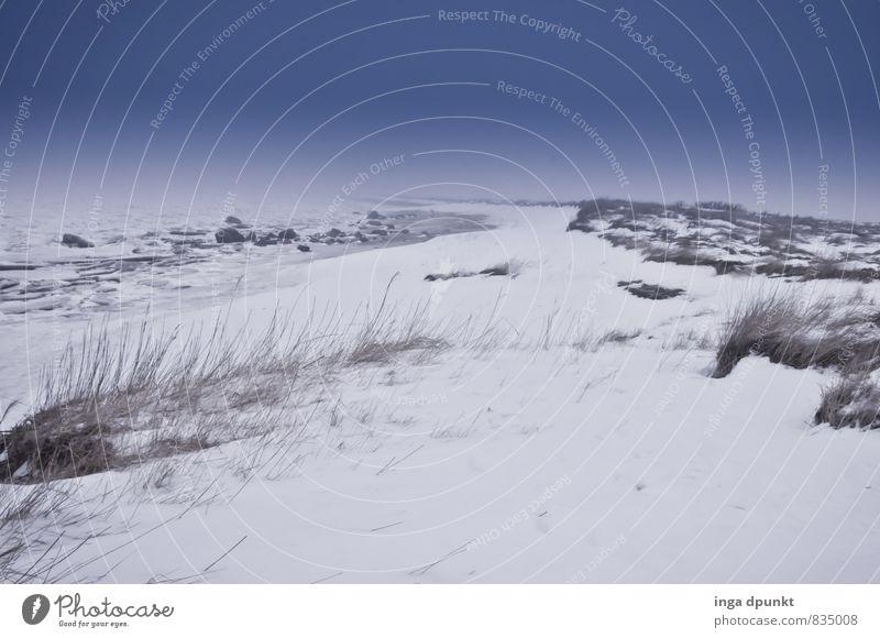 Am weissen Strand, am weissen Meer.... Umwelt Natur Landschaft Pflanze Urelemente Himmel Winter Klima Wetter Eis Frost Schnee Küste Nordsee Insel Wattenmeer