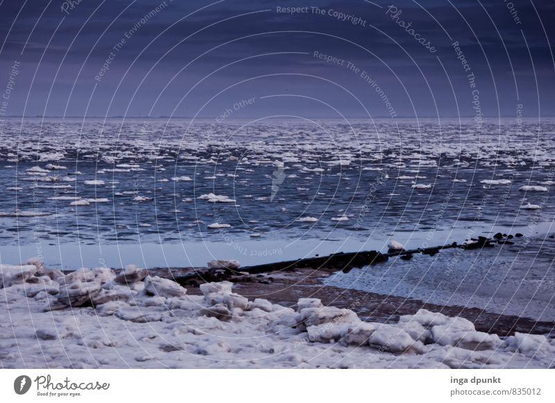 Eisschollen Umwelt Natur Landschaft Urelemente Wasser Winter Klima Klimawandel schlechtes Wetter Frost Schnee Küste Meer Insel Nordsee Föhr