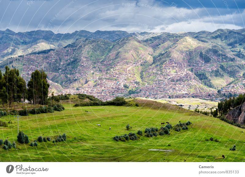Natur Ferien & Urlaub & Reisen grün Einsamkeit Landschaft Ferne Umwelt Berge u. Gebirge natürlich Sport oben wild Idylle Tourismus Kraft wandern