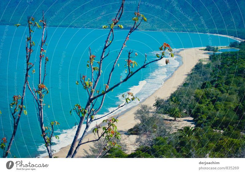 Blaues Meer, weißer Strand, leichte Brise,menschenleerer Strand, Schildkröten, Vögel, irgendwo in der Nähe von Cairns, Queensland / Australien. Freude