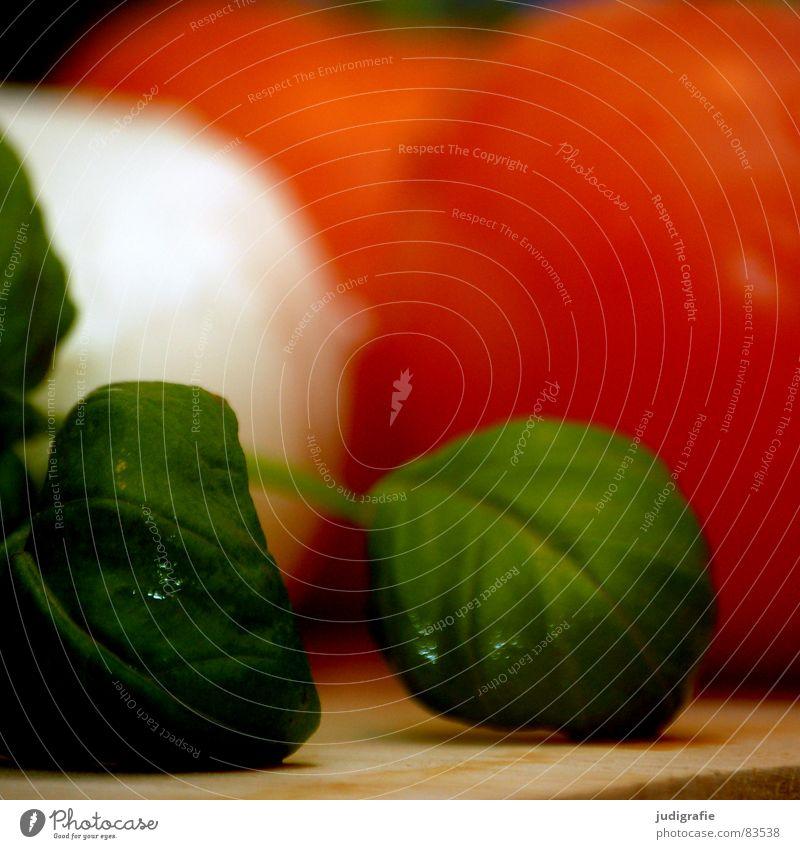 Abendessen Olivenöl Vorspeise Caprese Basilikum Stengel rot grün Holz Lebensmittel mehrfarbig Halm Ernährung Mahlzeit Italien Capri Gemüse Milcherzeugnisse