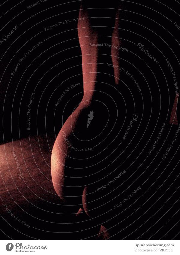 Mondschein Erotik schön Physik Lust Nacht heiß Akt Haut Rücken Hinterteil Freude Wärme anonym ideal Prima Lichterscheinung Weiblicher Akt