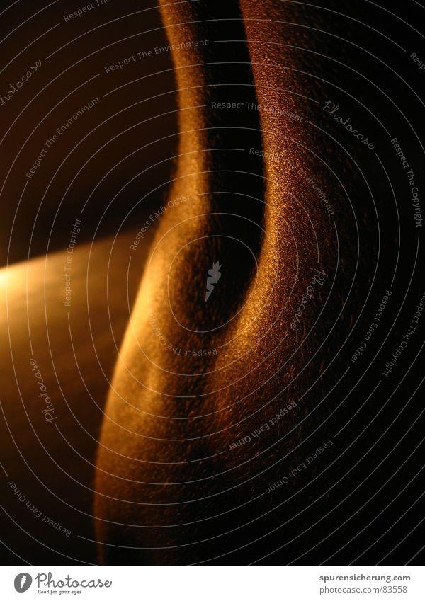 Mondschein Lichtspiele schön Freude Erotik nackt Spielen Wärme Haut Rücken Hinterteil Physik heiß Lust Akt anonym Prima