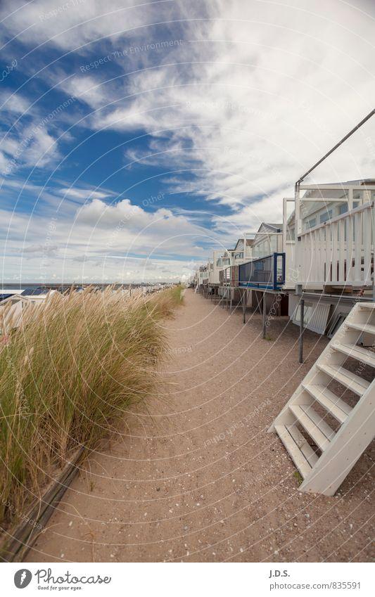 Strand Natur Ferien & Urlaub & Reisen Sommer Sonne Meer Erholung ruhig Strand Ferne Freiheit Glück Zeit Zufriedenheit Tourismus Ausflug Wohlgefühl