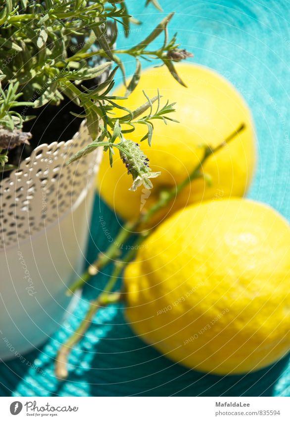 Summer Drinks and Terraces blau Sommer weiß Sonne Erholung ruhig gelb Leben Garten Lebensmittel hell Frucht ästhetisch Fröhlichkeit Bioprodukte Sommerurlaub