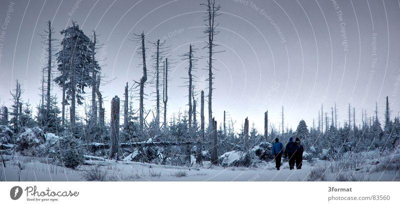 3freunde Wald Schnee Landschaft Berge u. Gebirge Menschengruppe Freundschaft Eis wandern Frost Romantik Zusammenhalt Märchen verloren Schneelandschaft verlieren