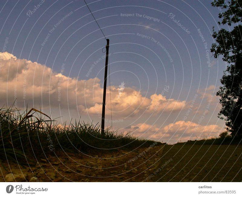 Am Boden ... Seitenstreifen Telefonmast Straßenrand unten Froschperspektive Horizont Wolken Grasnarbe Fußweg Wetter Arsch der Welt Niemandsland