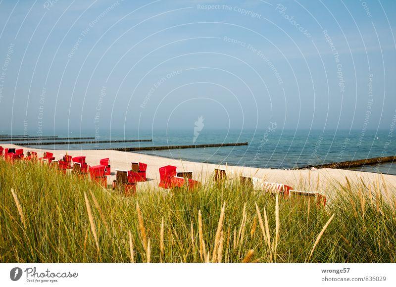 Strandkörbe | Ruhe Ferien & Urlaub & Reisen Sommer Sommerurlaub Meer Ostseeurlaub blau braun rot Strandkorb Stranddüne Sand Wasser Buhne Blauer Himmel Farbfoto
