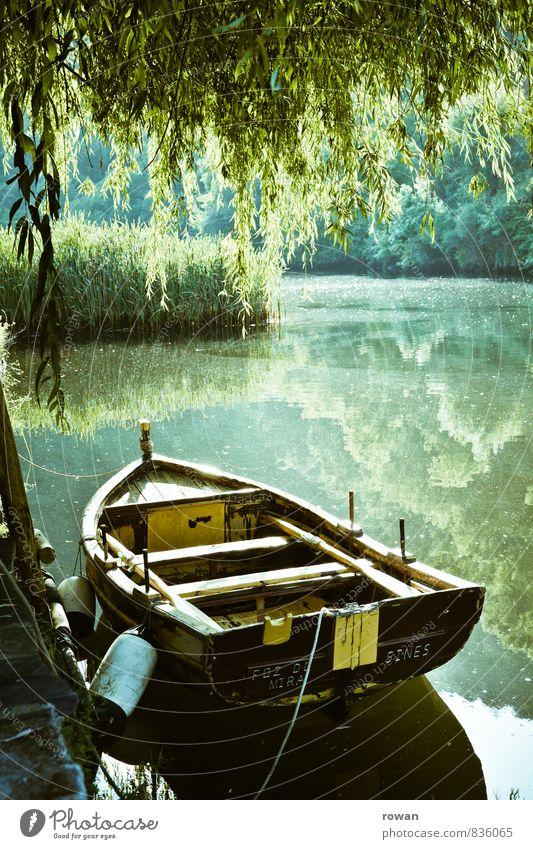 ruderboot Natur grün Sommer Erholung ruhig Landschaft Umwelt Wärme See Wasserfahrzeug Idylle Schönes Wetter Fluss Anlegestelle sommerlich Ruderboot