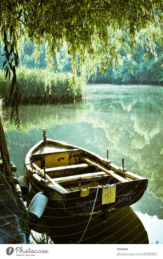 ruderboot Umwelt Natur Landschaft Schönes Wetter See Fluss Ruderboot Wasserfahrzeug Wärme ruhig Erholung Idylle grün Trauerweide Bootsfahrt Anlegestelle