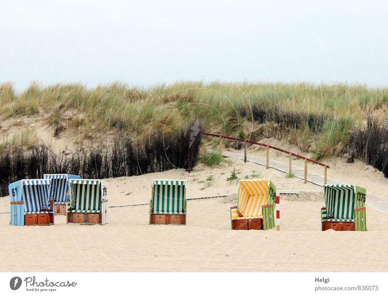 reinsetzen und chillen... Himmel Natur Ferien & Urlaub & Reisen blau Pflanze grün weiß Sommer Erholung Einsamkeit ruhig Landschaft Strand Umwelt gelb Gras