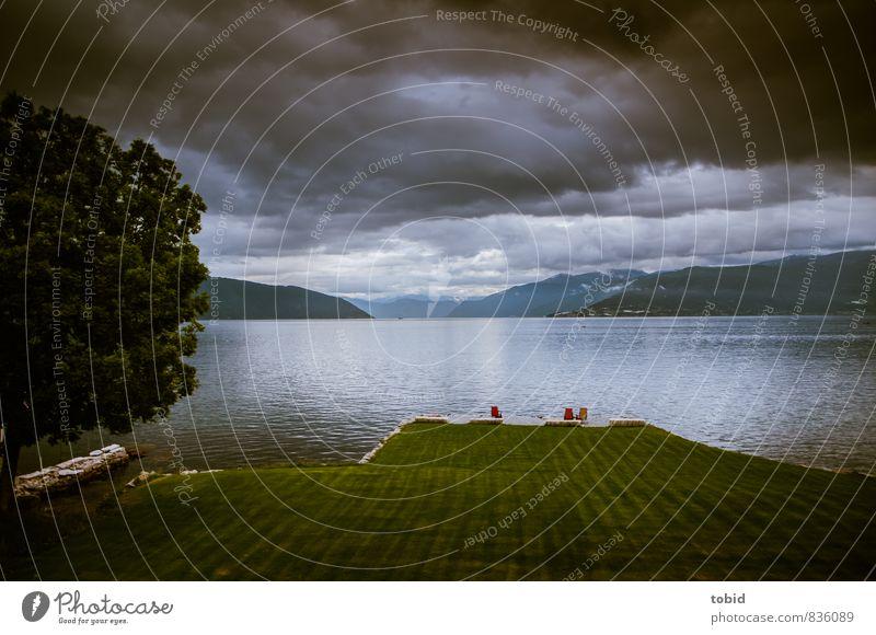 End of Day Natur Landschaft Urelemente Wasser Himmel Wolken Horizont schlechtes Wetter Baum Wiese Rasen Hügel Berge u. Gebirge Wellen Küste Bucht Fjord Norwegen