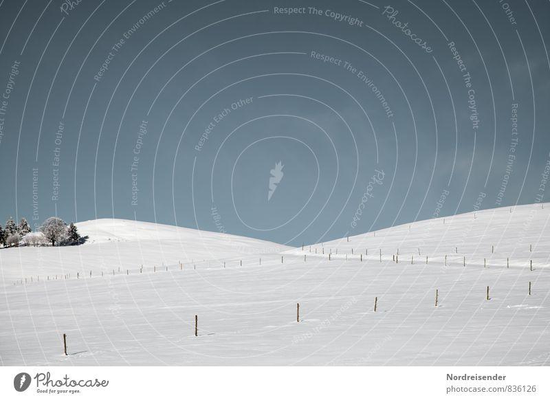 Eine Insel mit zwei Bergen..... ruhig Ferien & Urlaub & Reisen Tourismus Winter Schnee Winterurlaub Natur Landschaft Schönes Wetter Baum Hügel Wege & Pfade blau
