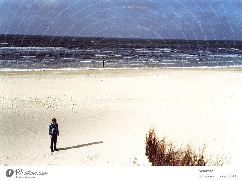 strand See Strand Meer Horizont Wellen mehrere Sand Wasser Wind Mensch sehr viele auf den strand setzen Lee