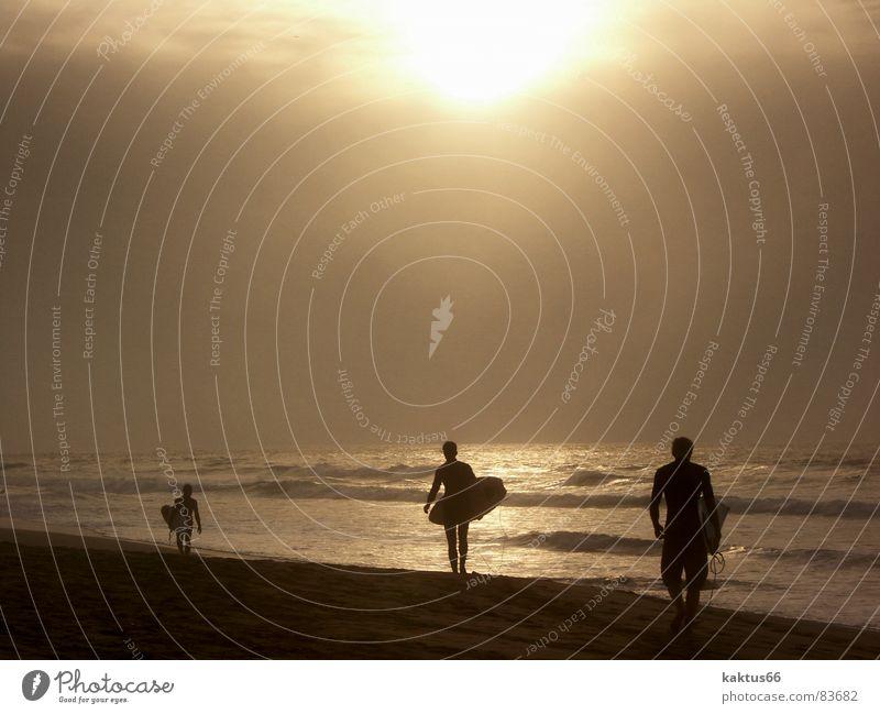 Sunset Surfer Mensch Wasser Meer Sommer Strand Ferien & Urlaub & Reisen ruhig Einsamkeit Ferne Sport kalt Freiheit Glück See Wärme Sand
