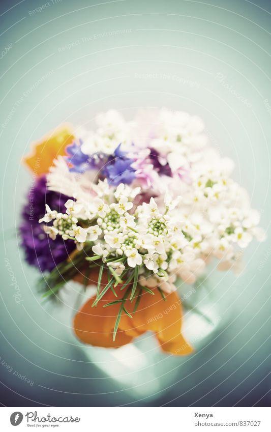 Für Mama Pflanze Blume retro blau gelb weiß Liebe Romantik Blumenstrauß Blüte Vase Muttertag Geschenk Menschenleer Tag Schwache Tiefenschärfe